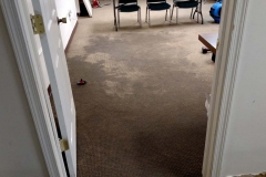 Carpet Cleaning Gallery