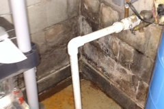 Mold Remediation Gallery